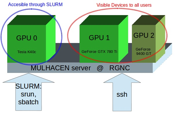 HPC and GPU computing at RGNC | Research Group on Natural